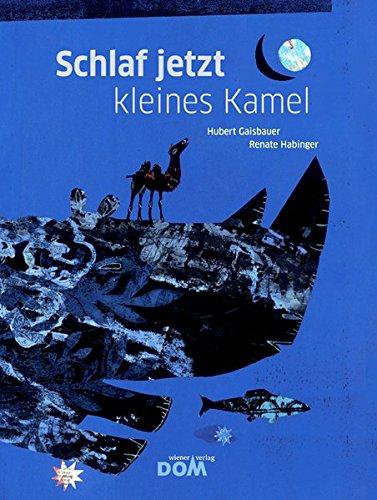 Schlaf jetzt kleines Kamel Book Cover