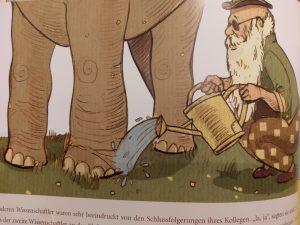 elefant7